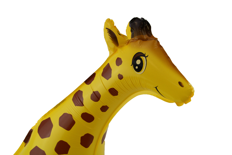 Darcey Giraffe